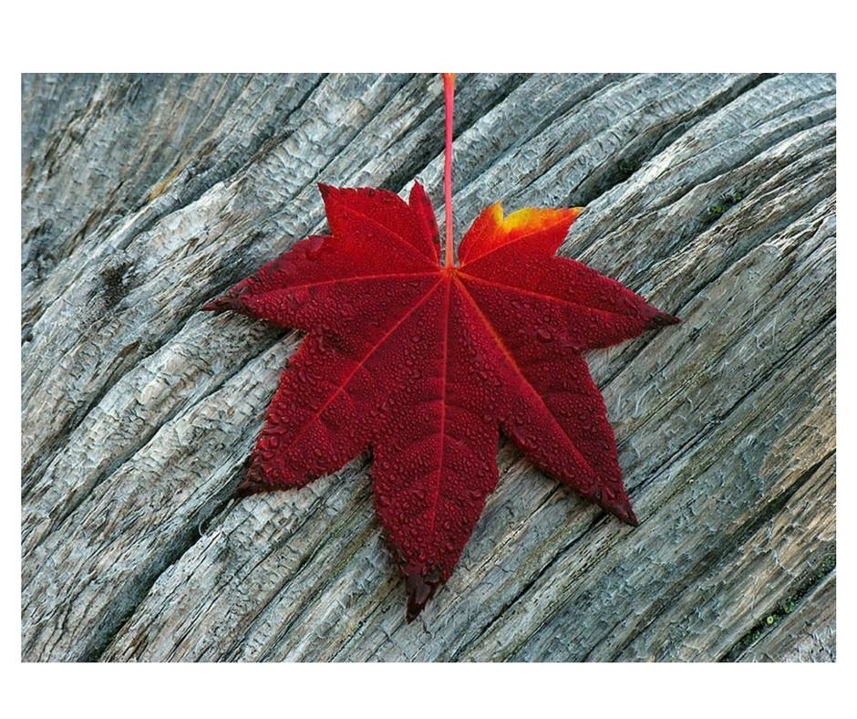 Wrzesień przynosi… to, co TY zdecydujesz.